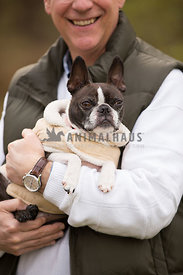 owner holding small dog in coat