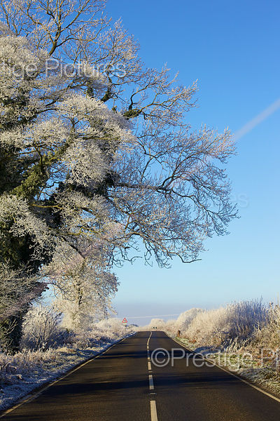 An Empty road on a Frosty Morning