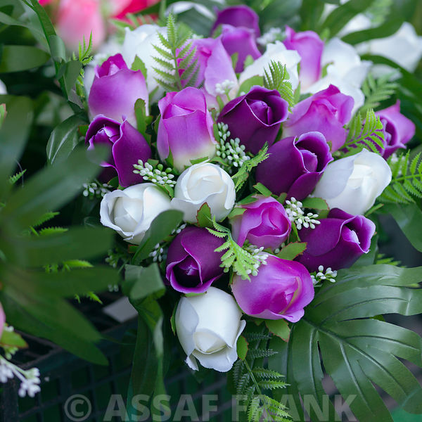 Bunch of white and purple roses