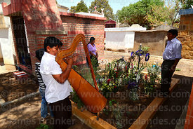 Peruvian man playing Andean harp next to grave for souls of the deceased, Todos Santos festival, Sipe Sipe, Cochabamba Depart...