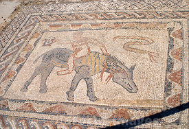 Mosaic form the House of the Acrobat, Volubilis, Morocco; Landscape