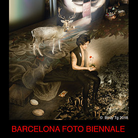 "BARCELONA FOTO BIENNALE (affiche ""The White Feather"" by Birdy Tg 2018"