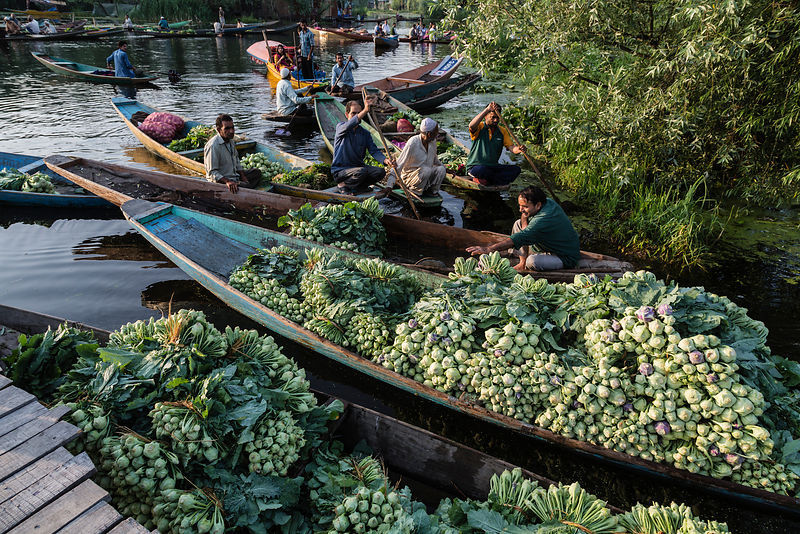 Shikaras Loaded with Vegetables in floating Market on Dal Lake