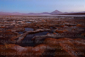 Bofedales on shore of Laguna Colorada before dawn, Cerro Pabellon volcano in distance, Eduardo Avaroa Andean Fauna National R...
