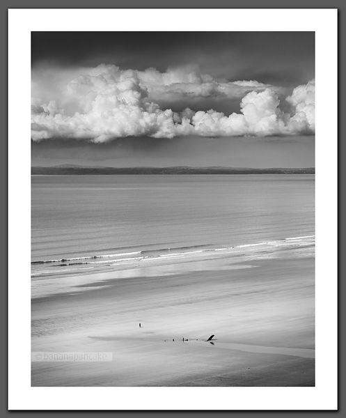 Alone at Rhossili - Black and White Print(BP3599BW)