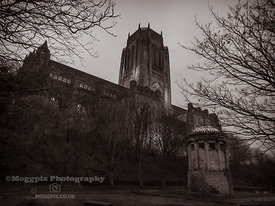 Liverpool Cathedral and the William Huskisson Memorial Monument