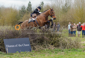 Natacha Lazareff - Dianas of the Chase - Side Saddle Race 2014.