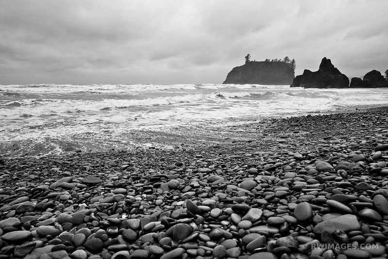 SEA STACKS OCEAN AND STONES RUBY BEACH OLYMPIC NATIONAL PARK BLACK AND WHITE