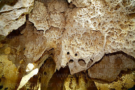 Fossilised algae and coral deposits in Gruta de las Galaxias cave near Salar de Uyuni, Aguaquiza, Nor Lipez Province, Potosí ...