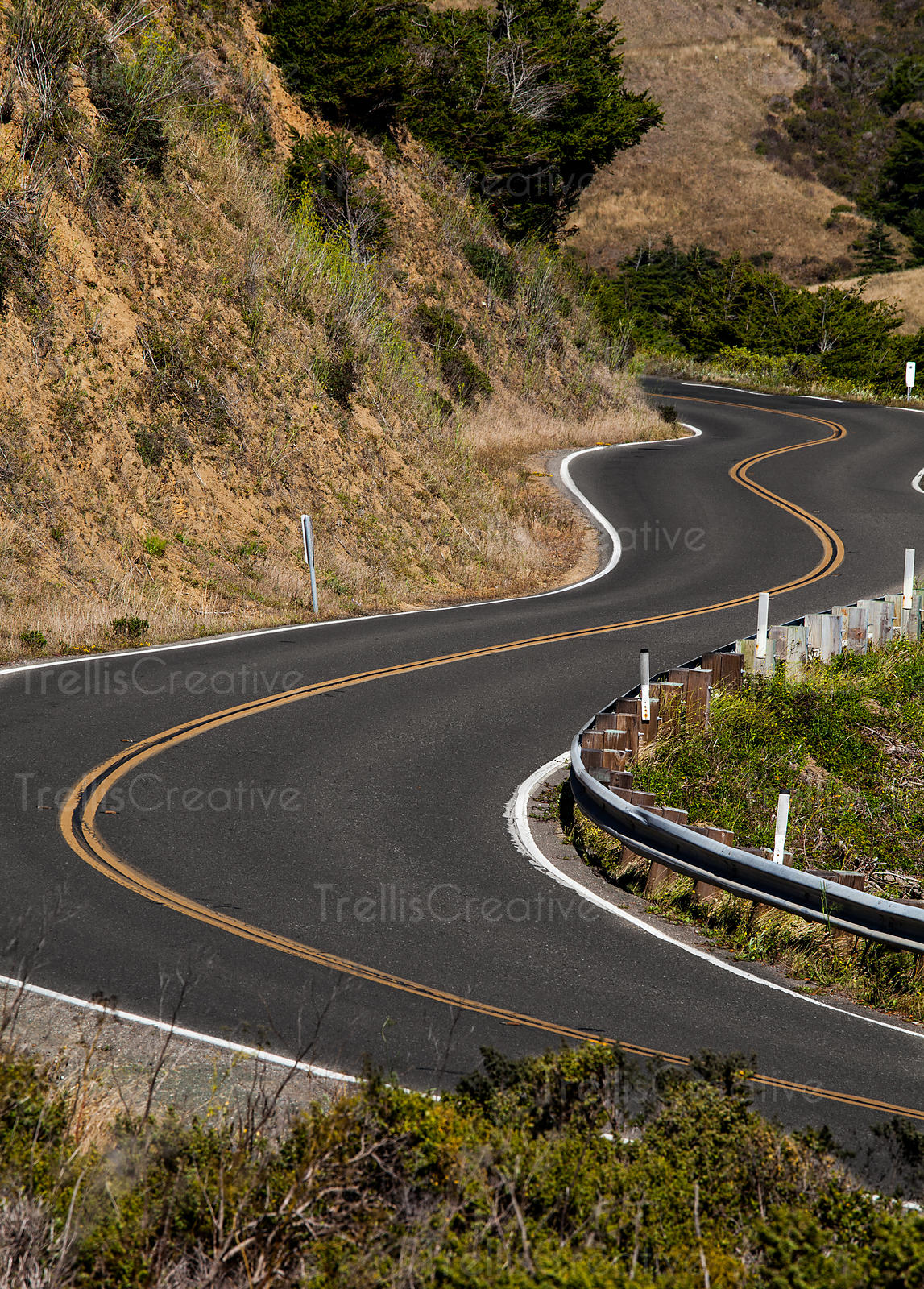 A winding road on Norther California's Great Highway.