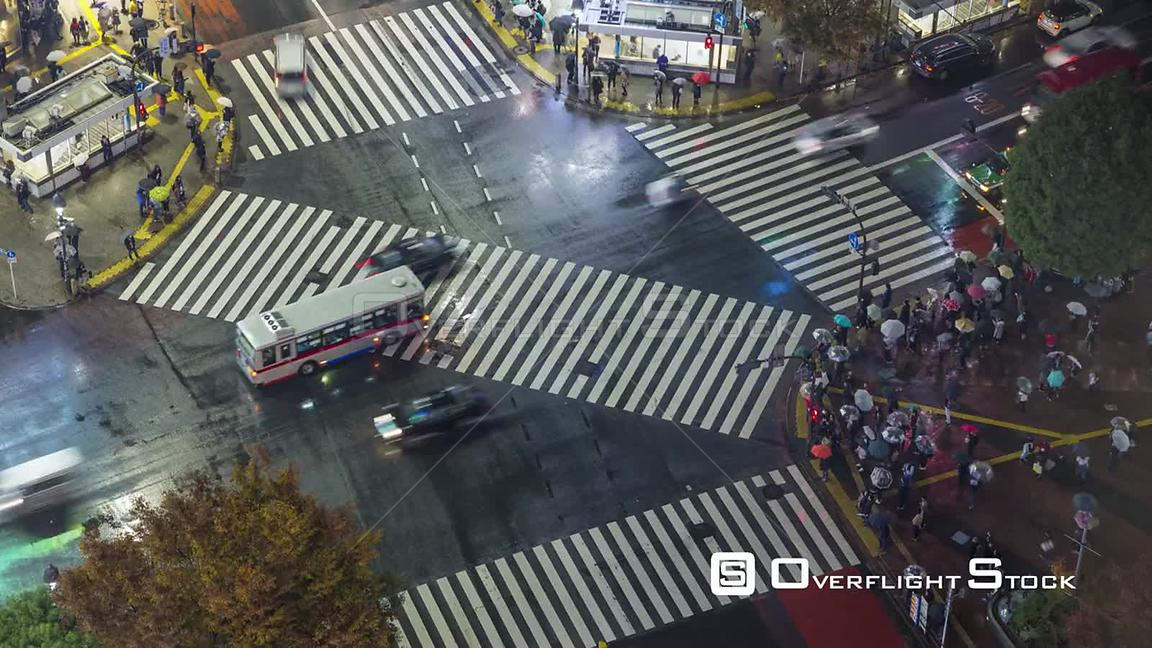 Timelapse of crowds of people crossing the centre of Shibuya shopping and entertainment district at night, Tokyo, Japan, Nove...