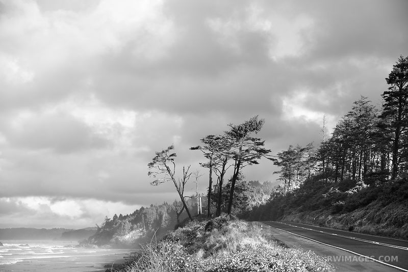 HIGHWAY 101 OLYMPIC NATIONAL PARK WASHINGTON PACIFIC NORTHWEST BLACK AND WHITE