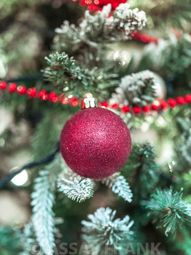 Christmas bauble hanging on Christmas tree