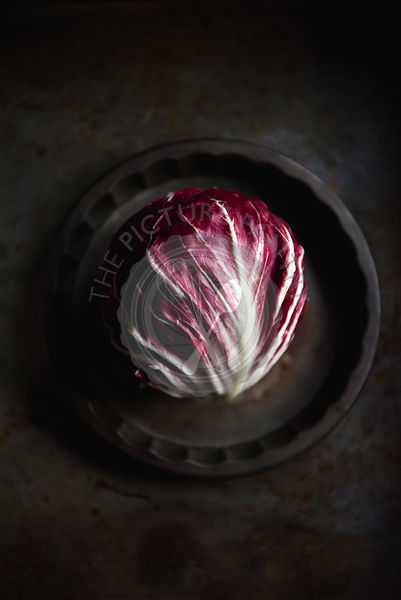 Radicchio Leaf on a dark background