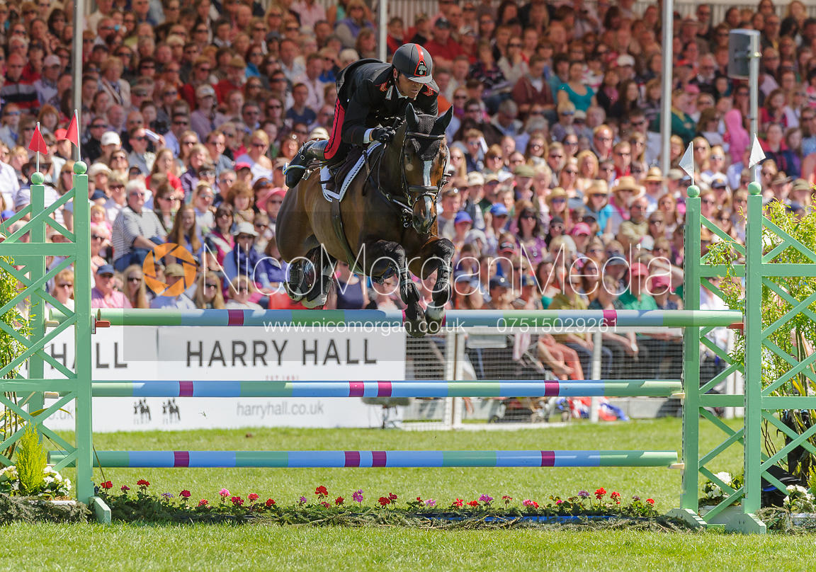 Stefano Brecciaroli and APOLLO VD WENDI KURT HOEVE - show jumping phase,  Mitsubishi Motors Badminton Horse Trials, 6th May 2...