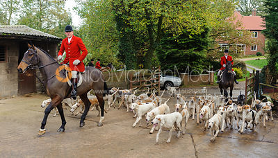 Huntsman Peter Collins with the Quorn hounds - Quorn at Cold Newton 8-11-13