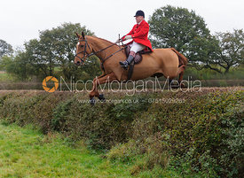 James Mossman MFH jumping a big hedge - Quorn at Barrowcliffe 1-11-13