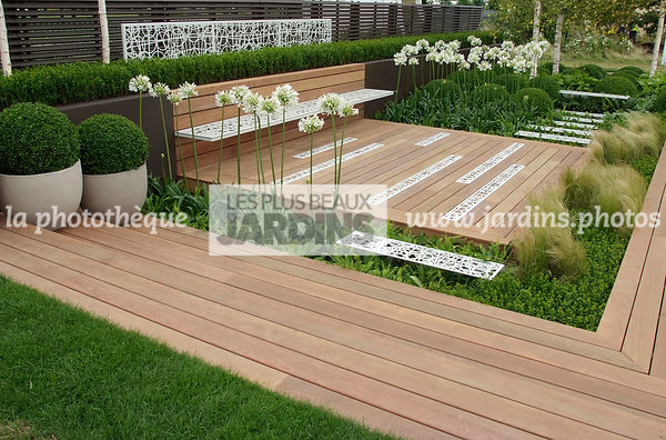 Agapanthus, Container, Contemporary garden, Perennial, Perennial rhizome, Pot, White, Wooden Terrace, Digital, Formal garden,...