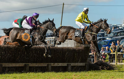 Tim Gredley and SILVERGROVE - Novice Riders - Woodland Pytchley at Dingley 15/4