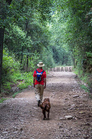 man and dog walking in the forest