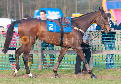 Race 7 - Belvoir Hunt Point to Point 24/3/12