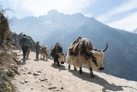 160503-MAMMUT_project360_Everest-0019-Matthias_Taugwalder
