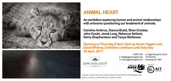 Animal Heart Exhibition, Canberra ACT