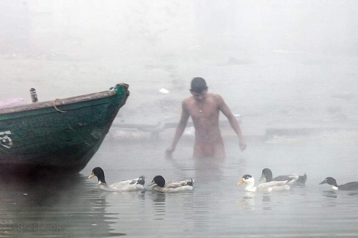 A man bathes alongside ducks in the Ganges River, Varanasi, India.