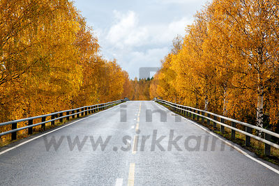 Road 77 in Central Finland