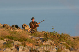 Hunter after Turtle Dove and Quail Malta April