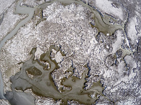 Aerial photograph of Blackwater Refuge in the winter