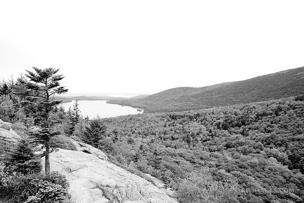 BUBBLES DIVIDE TRAIL ACADIA NATIONAL PARK MAINE BLACK AND WHITE