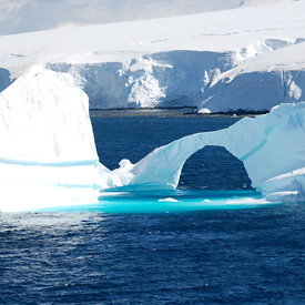 Antarctica & Chilé: Ice and Penguins (Magellanics, Gentoos, Chinstraps, Adeles)