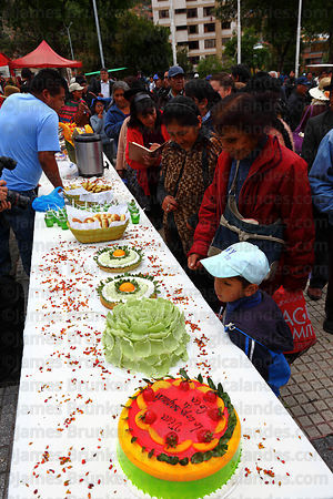 Cakes made from coca leaf flour at trade fair promoting alternative products made from coca leaves , La Paz , Bolivia