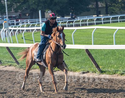 Saratoga_training-9263_August_06_2018_NAT_WHITE