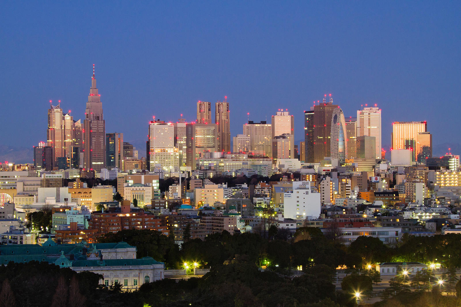 Shinjuku Skyline at dawn