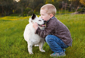 Young Boy Holding and Kissing a Happy White Dog in a Field