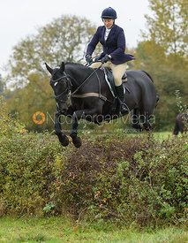 Emilie Chandler jumping a hedge from the meet - Belvoir Hunt Opening Meet 2016