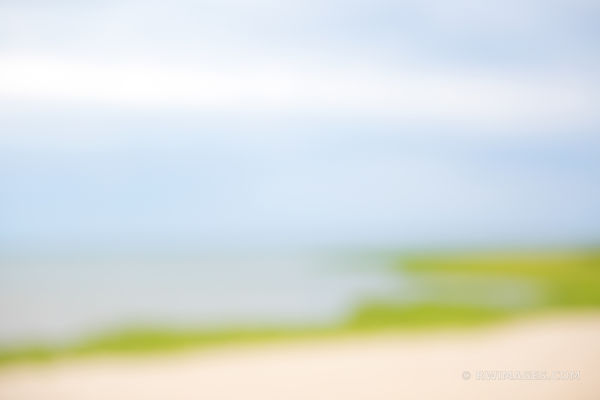 NATURE ABSTRACT CAPE COD COLORS