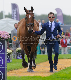 Ben Hobday and MULRYS ERROR - The first vets inspection (trot up),  Land Rover Burghley Horse Trials, 3rd September 2014.