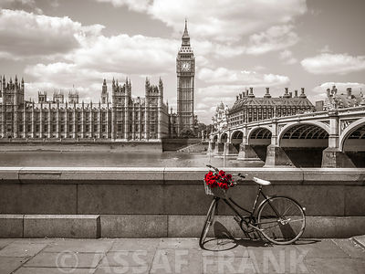 Bunch of Roses on a bicycle agaisnt big ben and Westminster bridge, London, UK