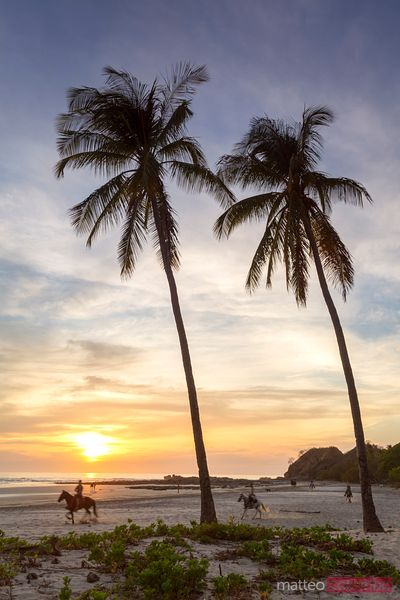 Tourists horse riding on a tropical beach at sunset, Costa Rica