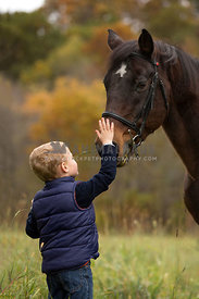 boy petting pony on nose