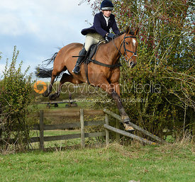 jumping a hedge near Little Dalby. Quorn Hunt Opening Meet 2018