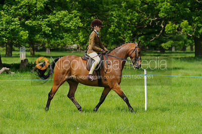 Class 43 - BSPS RIHS Pony of Show Hunter Type >133cms <=143cms