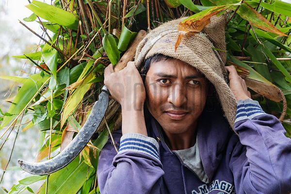 Portrait of a Sikkimese Man Carrying a Load of Fodder using a Head Strap
