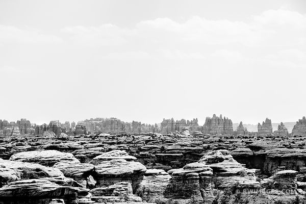 THE NEEDLES VIEW FROM SLICK ROCK TRAIL CANYONLANDS NATIONAL PARK UTAH BLACK AND WHITE