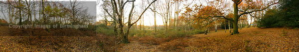 Panoramic of Sutton Park, Sutton Coldfield