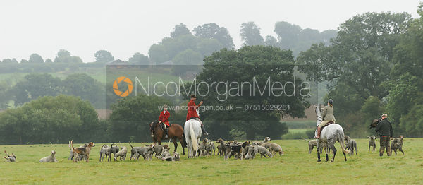 The Cottesmore Hounds and Eagle