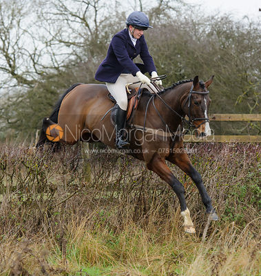 Harriet Walker jumping a hedge near Mrs Wilson's covert